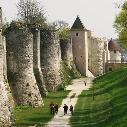 Outing to Provins - Full day tour